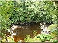 SJ0713 : Afon Efyrnwy / River Vyrnwy by Ian Medcalf