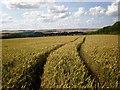 TA1066 : Wolds panorama near Rudston by Dr Patty McAlpin