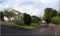 SX9065 : St Vincents Road, Torquay by Derek Harper
