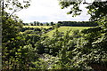 NZ1014 : View over the River Tees from Teesdale Way at Whorlton by Dave Bailey