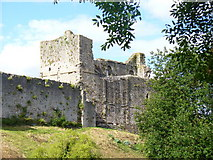 ST5394 : Chepstow Castle by Colin Smith