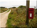 SY7681 : Holworth: postbox № DT2 46, Burning Cliff by Chris Downer