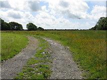 SM9911 : Fields Of East Hook Farm by Peter Whatley