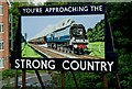 SU7239 : Strong Country advertisement at Alton Railway Station by P L Chadwick