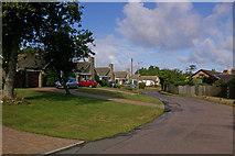 SZ5392 : Bungalows in Brocks Copse Road by Ian Capper