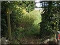 TA0041 : Footpath near Cherry Burton by Dr Patty McAlpin