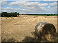TG3600 : Straw bales in field by Evelyn Simak