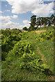 TF8106 : Old track at Brake Hill by Bob Jones