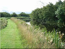 N6747 : Royal Canal at Blackshade, Co. Meath by JP