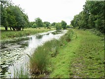 N7641 : Royal Canal west of Enfield, Co. Meath. by JP