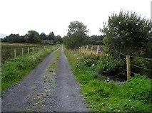 G7656 : Lane, Mullanyduff by Kenneth  Allen