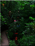 SZ5881 : Chine Path by John Webber