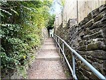 SJ9995 : Path to Mottram Church by Gerald England