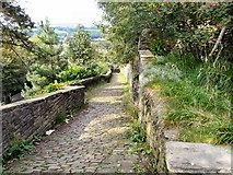 SJ9995 : Path from Mottram Church by Gerald England