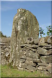 NR7625 : Standing Stone at Glenlussa Lodge by Leslie Barrie