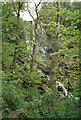 NM5054 : Waterfall in woodland south of Tobermory, Mull by John Rostron