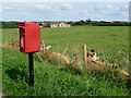 ST7516 : Stalbridge: postbox № DT10 129, Kings Mill Road by Chris Downer