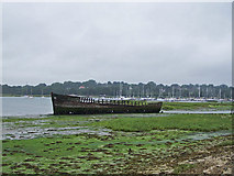 SU4808 : Wreck on the River Hamble by Richard Dorrell