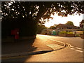 SZ0291 : Parkstone: corner of Danecourt Road and Fernside Avenue by Chris Downer