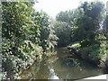SJ9131 : River Trent downstream of  Aston by Stone bridge by John M