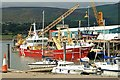 J1418 : Mussel dredgers, Warrenpoint by Albert Bridge