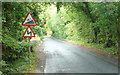TQ1148 : White Down Road - Steep Hill 18% by Adam Morse