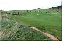 SX6642 : Golfers on Thurlestone Golf Course by Tony Atkin