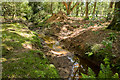 SU2606 : Warwickslade Cutting: the new stream takes shape (start of sequence) by Peter Facey