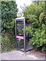 TM4365 : Theberton Telephone Box by Adrian Cable