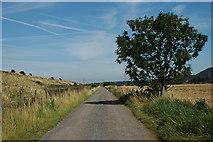SJ4977 : Lordship Lane - NCR 5 by Row17
