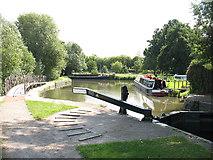 TL4311 : River Stort above Parndon Lock by Stephen Craven