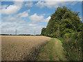 TL4313 : Bridleway west of Gilston Park by Stephen Craven