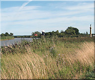 TG4001 : Norton Marsh Drainage Mill and Hardley Cross by Evelyn Simak