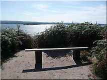 SZ0287 : Brownsea Island: a bench with a view by Chris Downer
