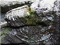 SN1333 : Flow banding in igneous rock by ceridwen