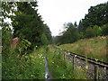 SO0513 : Path beside Brecon Mountain Railway by Gareth James