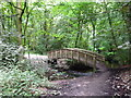 SJ6576 : Footbridge over Marbury Brook by Raymond Knapman