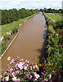 SJ6558 : The view eastwards from Minshull Lock by Andy Beecroft