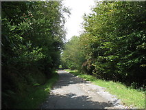 J3630 : The track leading to the Shepherd's Lodge Outdoor Activities Centre by Eric Jones
