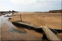 SS2006 : Summerleaze Beach at Bude by Steve Daniels