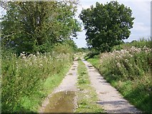 SU1091 : Bridleway, Purton Stoke by Maigheach-gheal