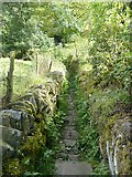 SE0722 : Walled path, Norland by Humphrey Bolton