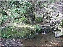SE0722 : Maple Dean Clough, Greetland by Humphrey Bolton