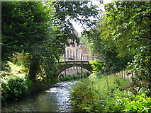 SJ8383 : River Bollin, Quarry Bank Mill by George Evans