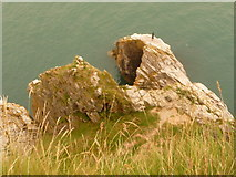 SX9456 : Berry Head: looking down on a fisherman by Chris Downer
