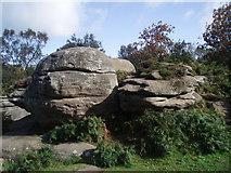 SE2064 : Brimham Rocks by Paul Gillett