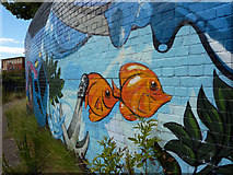 TM1543 : By the Gipping river footpath by Andrew Hill