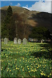 NY3916 : Patterdale Churchyard by Philip Halling