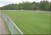 SU7682 : The 'Regatta' Green, Henley On Thames by Kurt C
