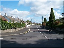 J3630 : Bungalows at the top of Slievenamaddy Road by Eric Jones